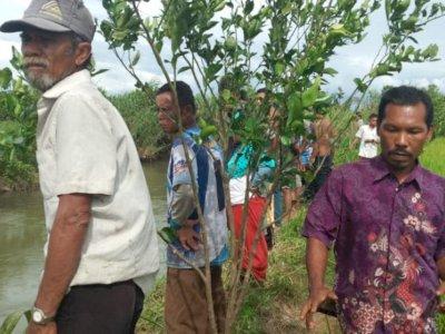 Geger, Seorang Warga Pasaman Barat Hilang Diterkam Buaya Saat Ambil Wudhu di Sungai