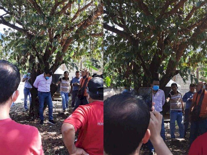 Wali Kota ini Diikat di Pohon oleh Warga Gara-gara Tak Tepati Janji Kampanye
