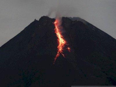 Dalam 6 Jam, Gunung Merapi 36 kali Meluncurkan Lava Pijar