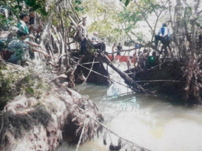 Tiga Perahu Belum Temui Korban yang Diterkam Buaya di Sungai Barang Sikabau Pasaman Barat