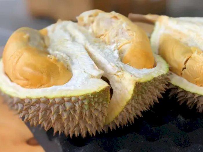 Sedikit yang Tahu, Ternyata Ini Manfaat Biji Durian Bagi Kesehatan