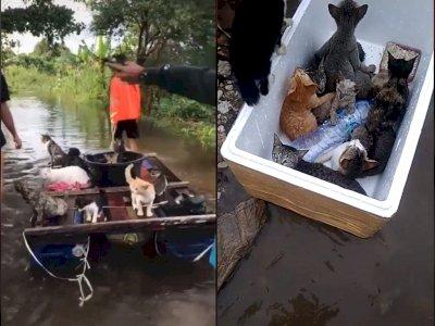 Netizen Ini Banjir Pujian Setelah Bantu Evakuasi Kucing yang Terjebak Banjir