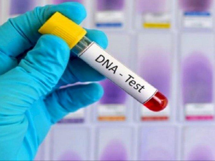 Tim DVI Terima 714 Sampel DNA atau Informasi Genetik Korban Sriwijaya Air SJ182