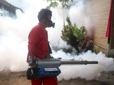 FOTO: Pengasapan di Daerah Endemik Demam Berdarah