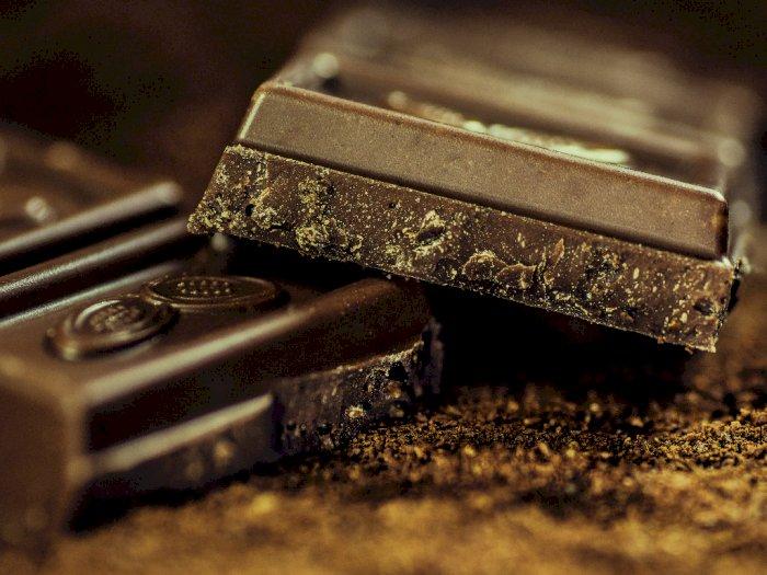 Berikut Fakta dan Mitos Tentang Coklat yang #KAMUHARUSTAU