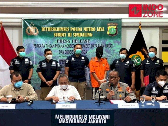 Polisi Ngaku Nyamar Jadi Pembeli untuk Tangkap 'Calo' Satwa Dilindungi