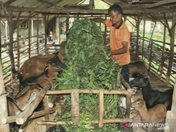 Jumlah Penduduk Miskin di Riau Meningkat akibat Pandemi Covid-19