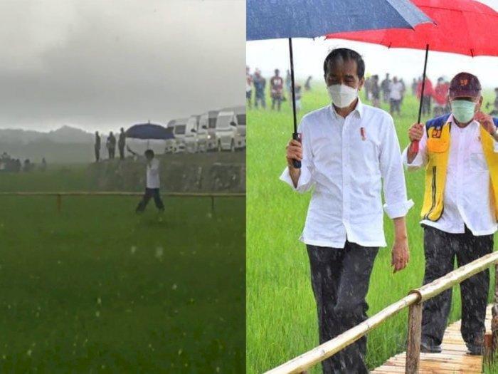 Viral Video Jokowi Blusukan di Tengah Sawah Tembus Hujan Lebat, Enggan Dikawal Paspampres