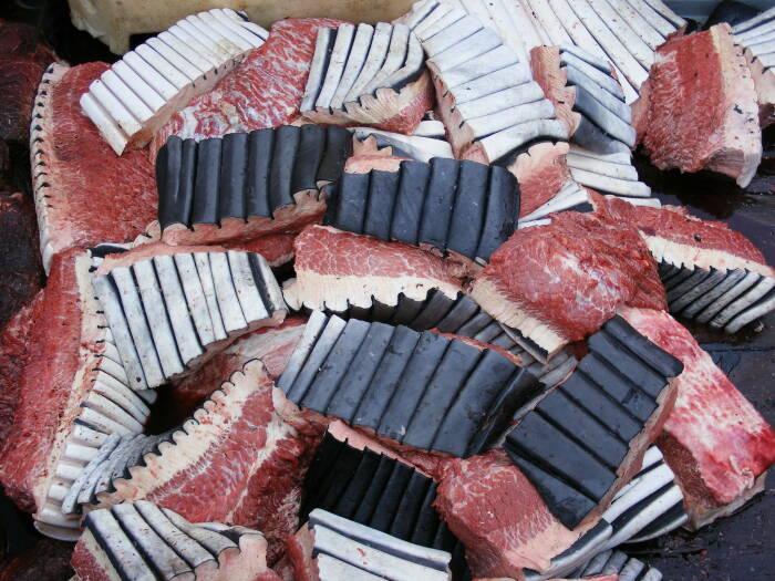 Konsumsi daging ikan paus di Jepang