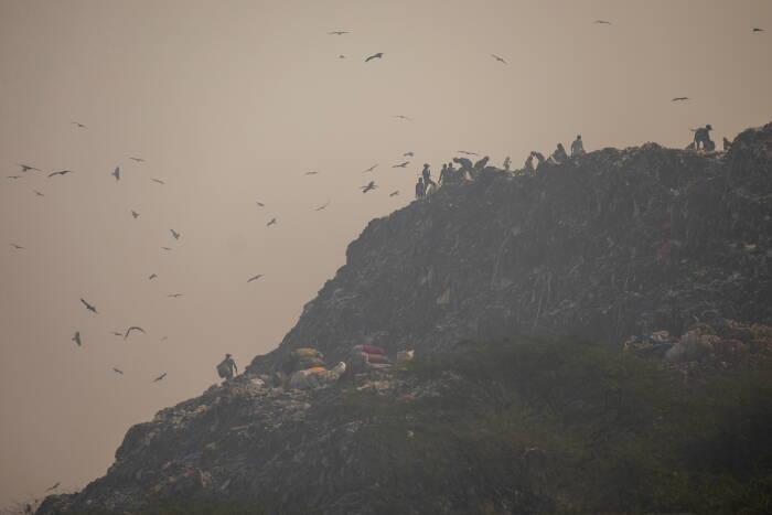 Para pemulung mengumpulkan barang-barang daur ulang dari tempat pembuangan sampah pada suatu pagi yang berkabut di New Delhi