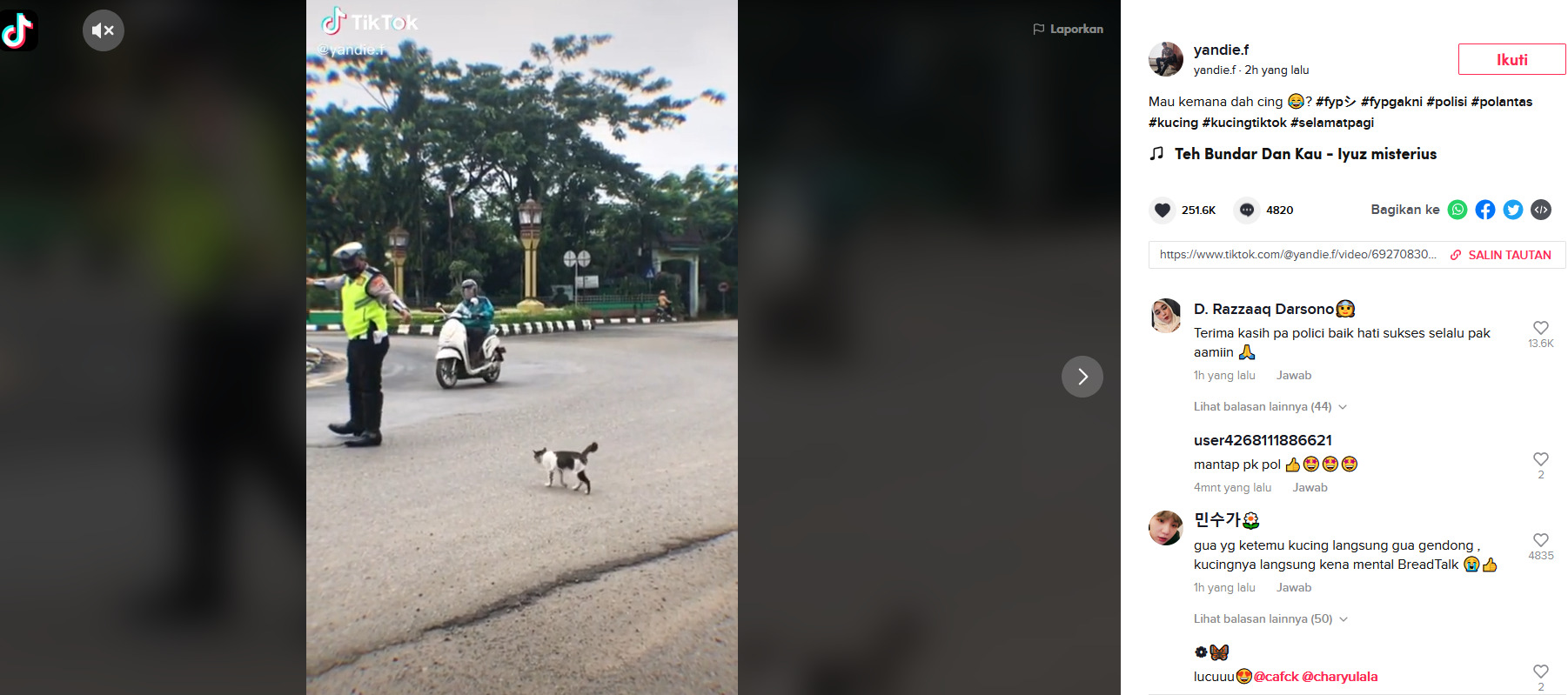 polisi bantu kucing menyeberang jalan raya
